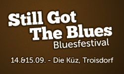 """Still got the Blues"" Bluesfestival-foto"